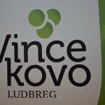 Kušaonica vina – Vincekovo – 2020 – Ludbreg – 28.01.2020.